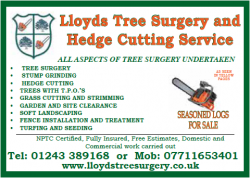 Lloyds Tree Surgery and Hedge Cutting Service