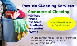 Patricia Cleaning Services